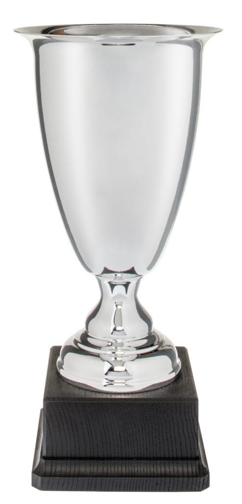 Coppa in metallo argento